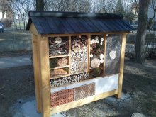 38. Mega hmyzí domek